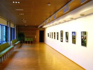 Klaassaali galerii